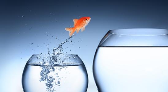 fish 548x300 - Социальная ипотека - условия программ, государственная поддержка, особенности